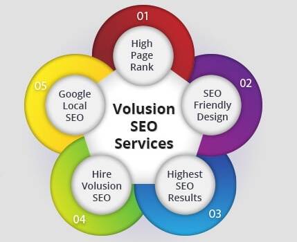 Volusion SEO Services, Volusion SEO Company